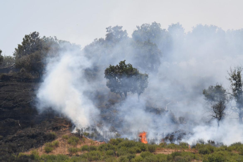 Le fiamme bruciano una pineta, a Linguaglossa, alle pendici dell'Etna, vicino a Catania, Sicilia