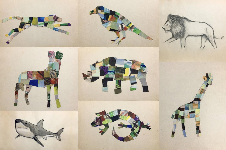 Franco Cenci, «Zoomarket», collage, 2020