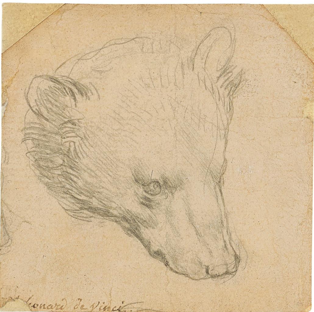 La Testa d'orso  in punta d'argento  di Leonardo da Vinci (1480 ca.), recentemente battuta all'asta  da Christie's