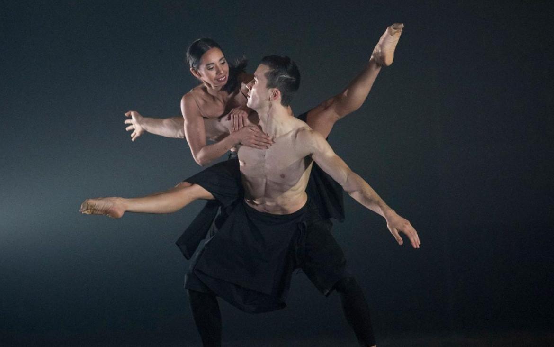 In «Autobiography», Wayne McGregor mette in danza un «catalogo» di movimenti:  23 «volumi» – stesso numero dei cromosomi del nostro genoma – frammentati e condensati in una coreografia guidata, anch'essa, da principi di duplicazione  e mutazione, Londra,  Sadler's Wells Theatre, 2017