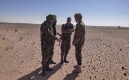 Nel Sahara Occidentale guerra a bassa intensit e ad alta sproporzione